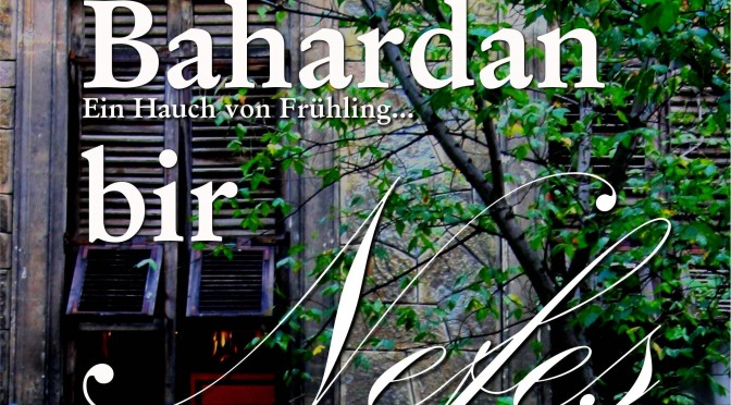 bahardanbirnefes_web_website_schnitt